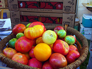 organic Heirloom tomatoes at Slow Food Nation'...