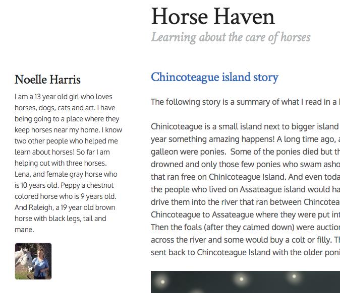 snapshot of horsehaven